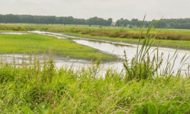 landschap in Zuidoost-Drenthe